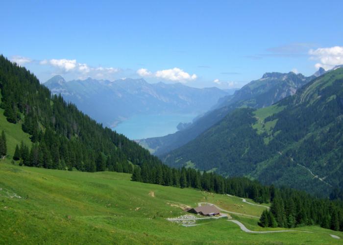 Switzerland-Alps