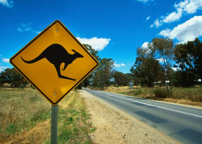 Kangaroo-sign-2010