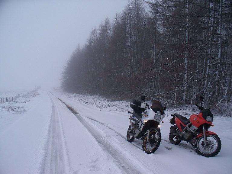snow_2011-02-12.jpg