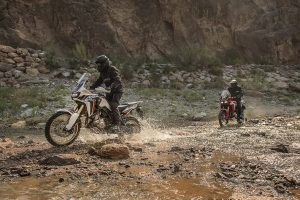 Honda's new Africa Twin in pictures