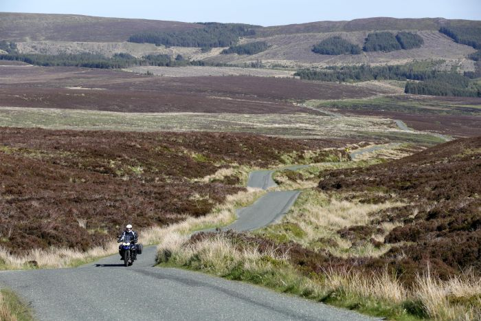 Geoff in the Sally Gap, County Wicklow