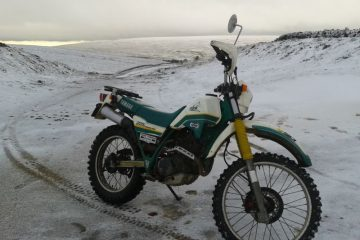 Winter green laning