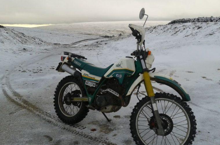 Winter green laning