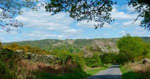 Lane in Winster