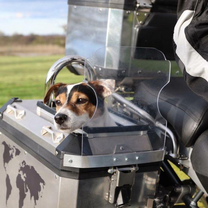 Dog-friendly pannier