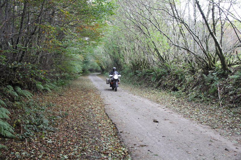 Autumn roads in Exmoor