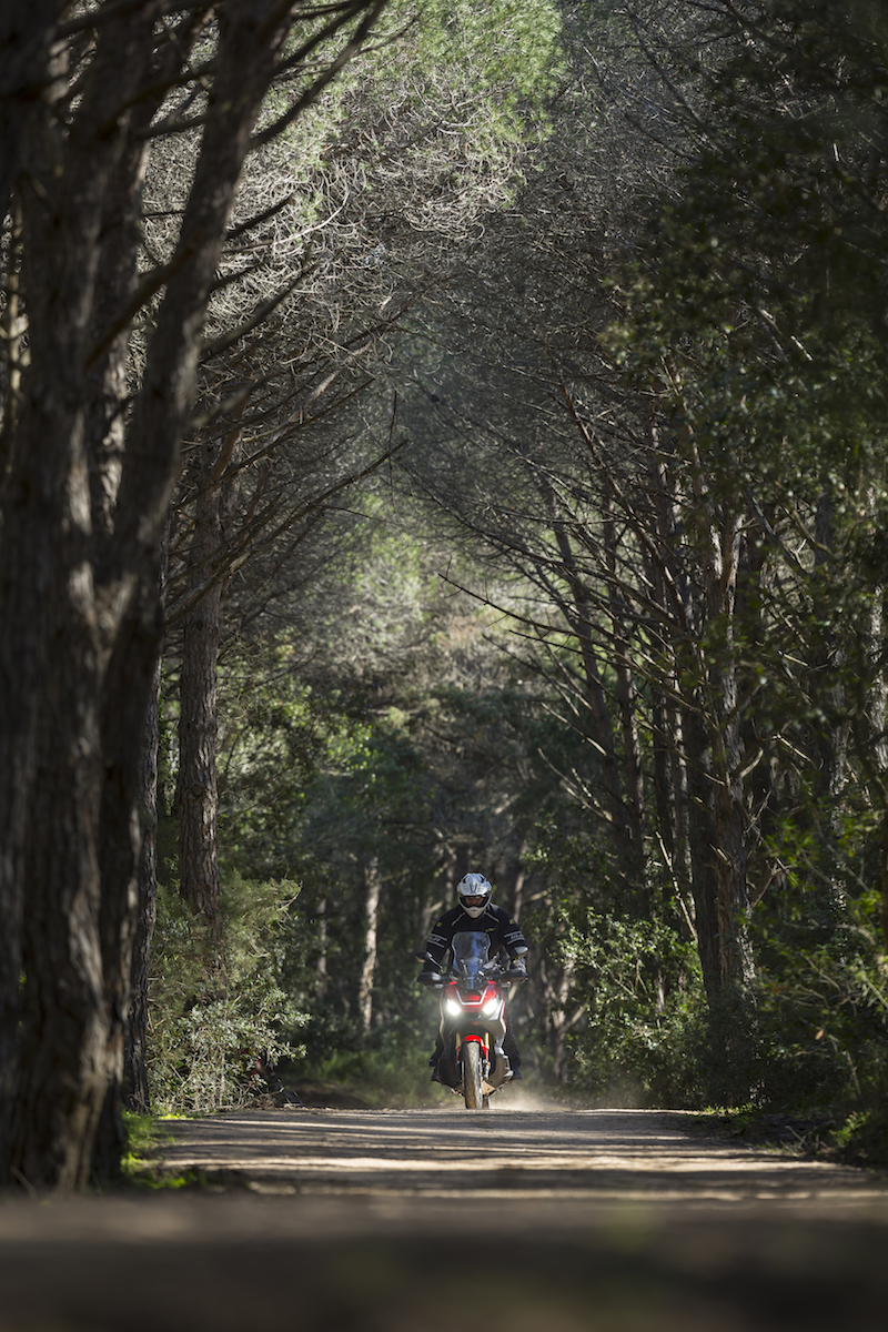 Motorcycle riding in wooded trail Sardinia