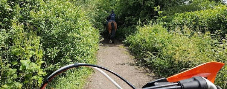 A horse and motorcycle on a green lane