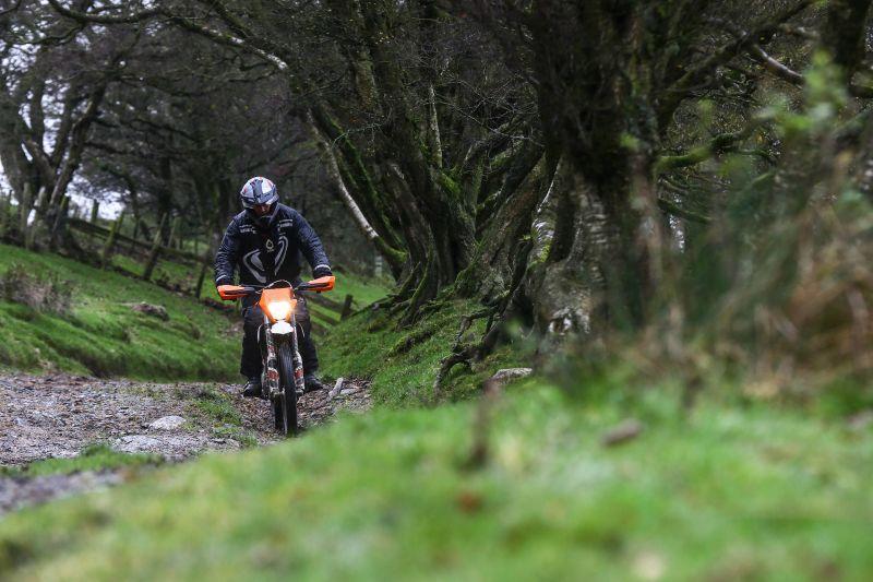 KTM Freeride 250 woodland