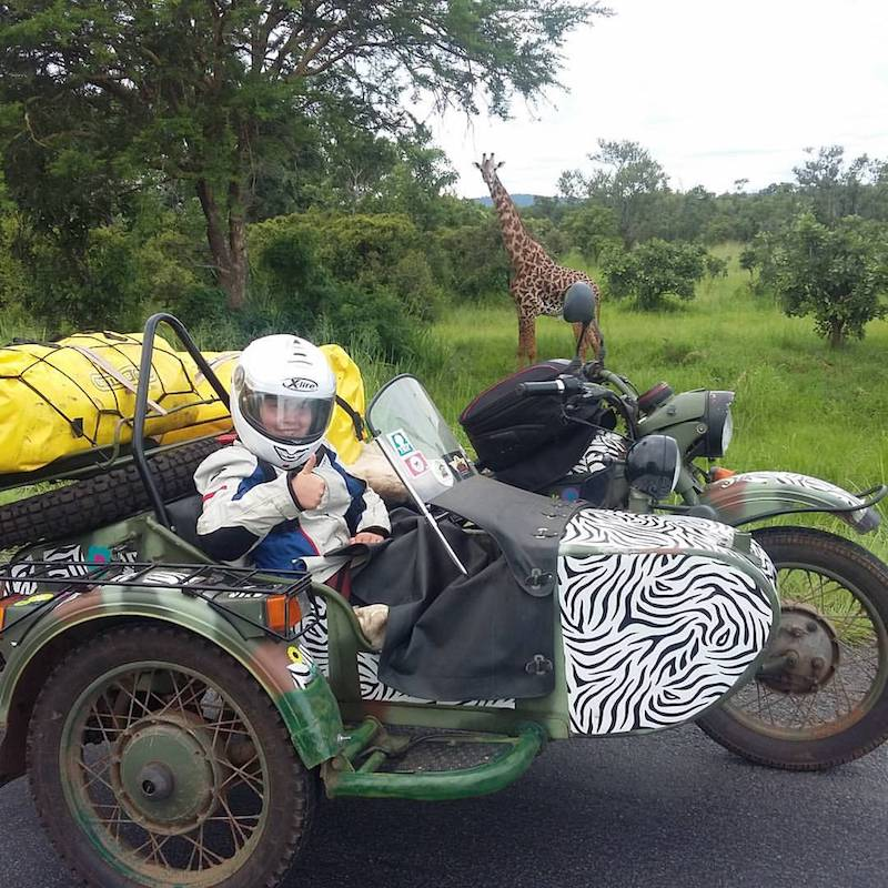 Sofia Cowpland in a side car with a giraffe looking on