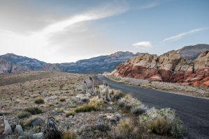 Hertz launches USA Bike Rental