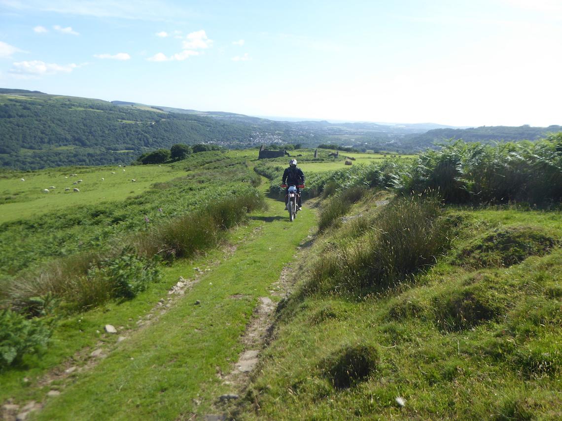 Grassy-trails-ahoy1