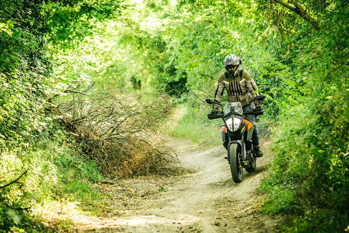 KTM390-wooded-trail