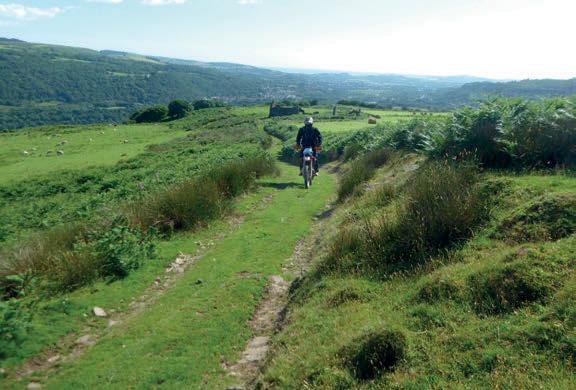 enjoying the grassy trails