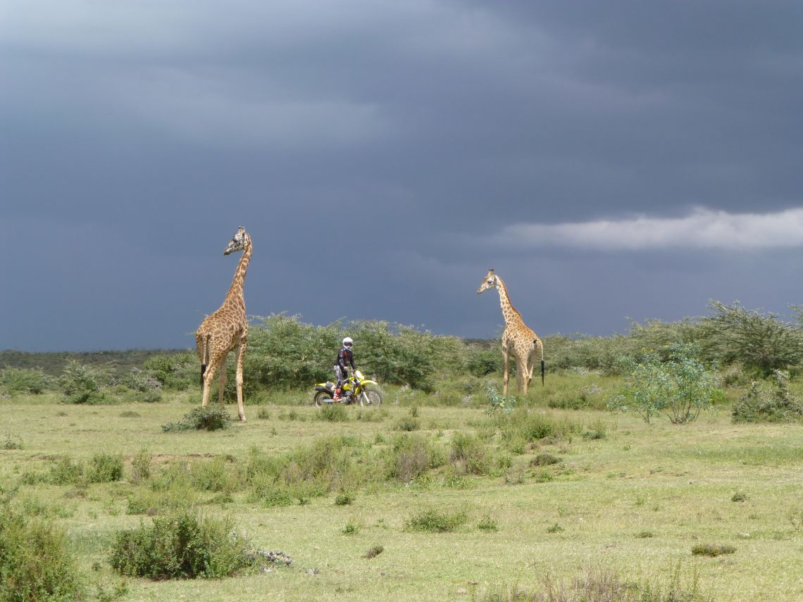Kenya Feature Image