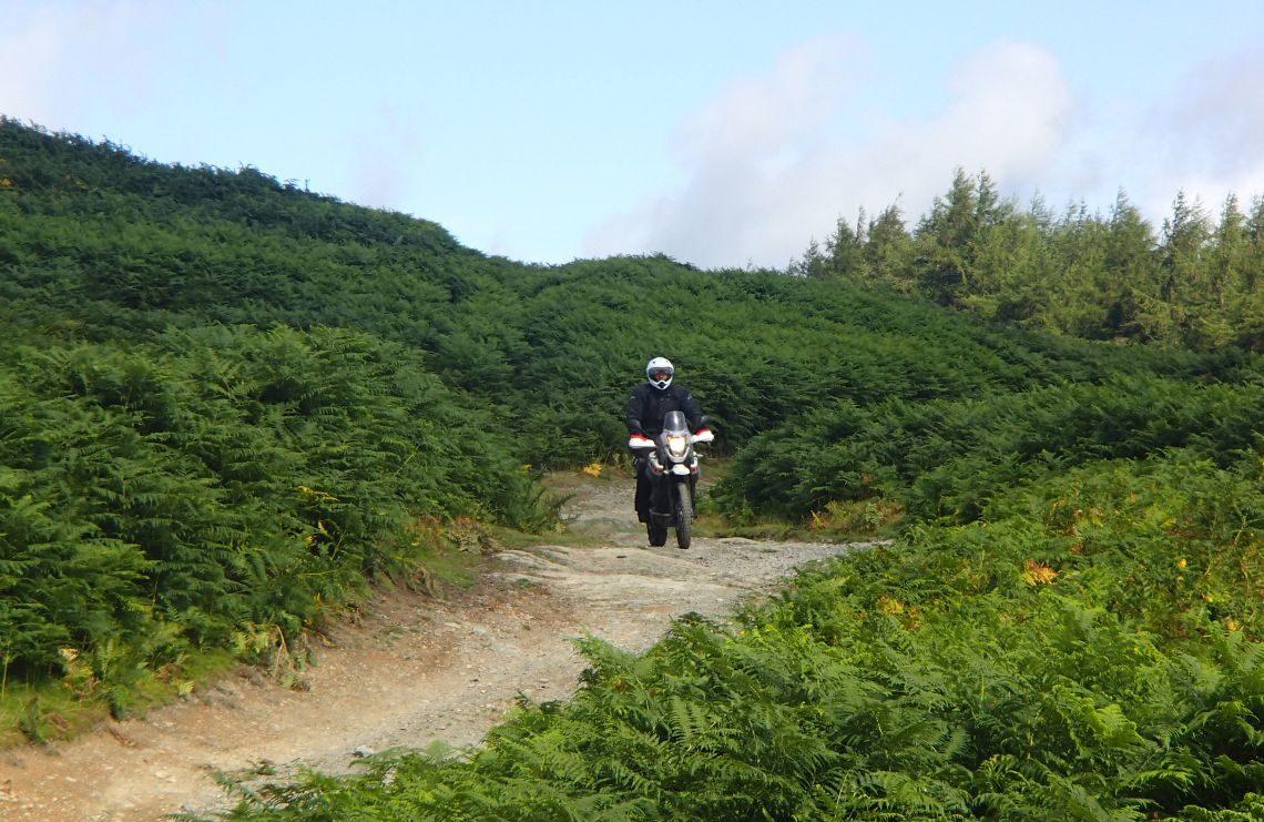 Straightforward-trails