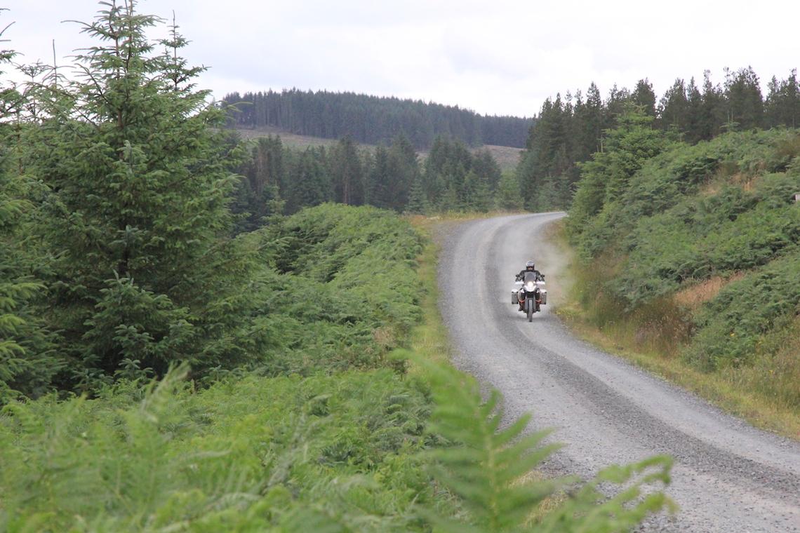 Through Kielder Forest