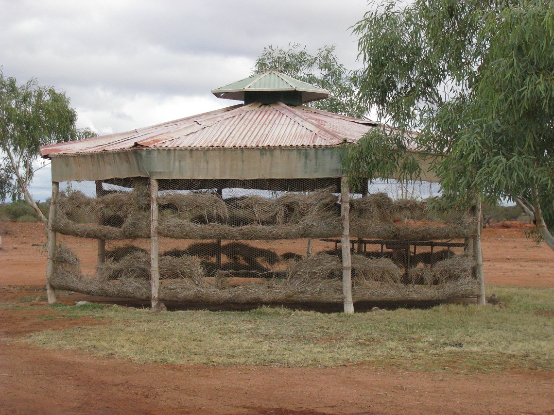 53 Cooling Shed