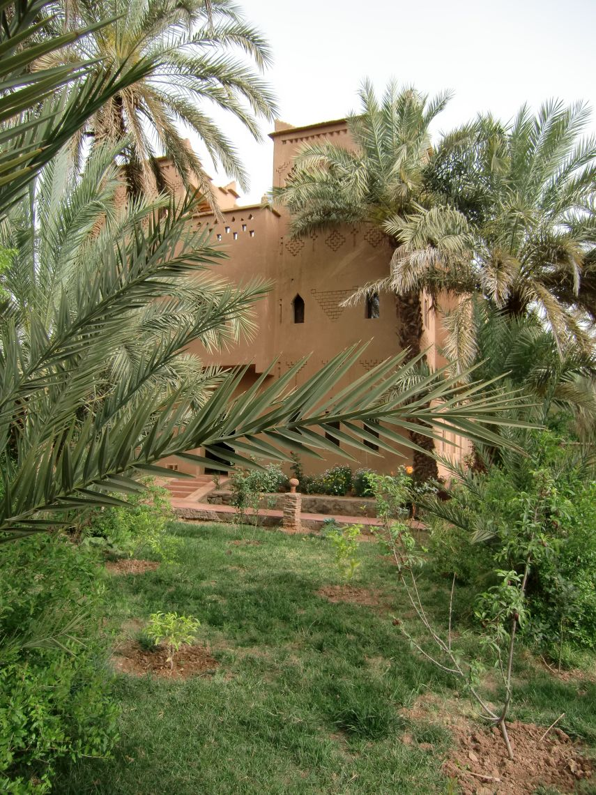 Our Riad on day two - great food and cold beer. Perfect.