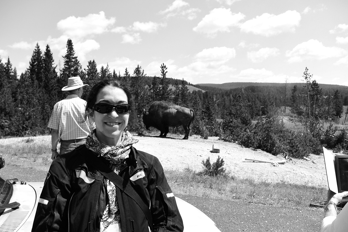 Yellowstone national park July 2015